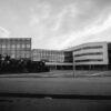 Lycées